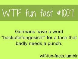 یک واقعیت جالب! آلمانی ها کلمه ای مانند تصویر دارند که اشتیاق شان را برای کوبیدن مشت به صورت کسی نشان می دهد! (انگار دندان هایشان را به هم فشار می دهند!)