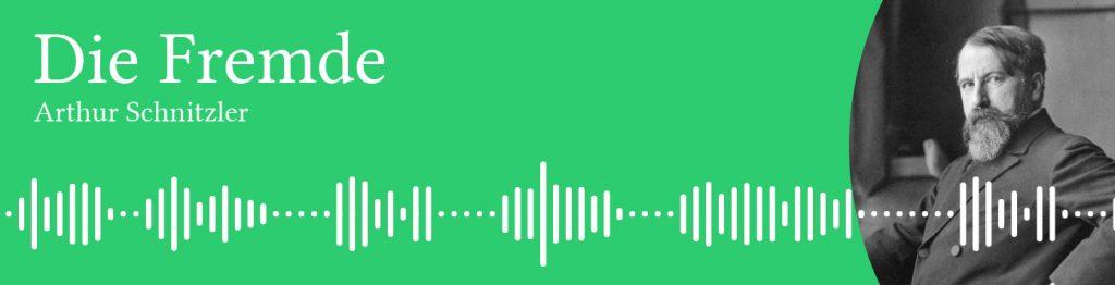 arthur-schnitzler-audiobook-german-1024x262