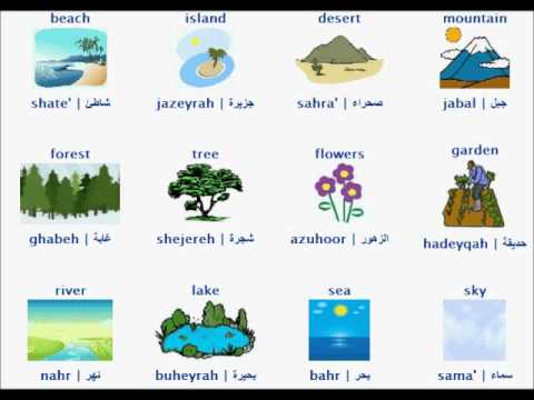آموزش تصویری چند لغت عربی