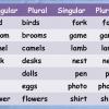 plural singular