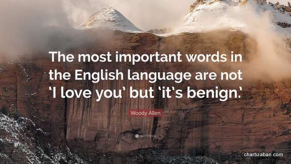 english quotes-019