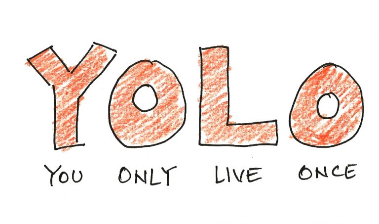 C:\Users\mohammad\Downloads\YOLO-ACRONYM-768x453.jpg