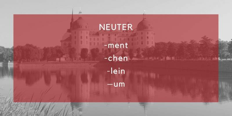 german neuter endings